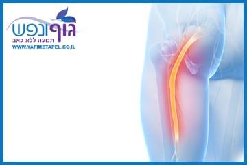 הקרנת כאב לעכוז ולרגל משריר הפיריפורמיס