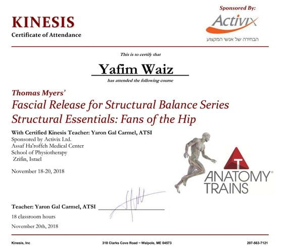 Anatomy trains fans of the hips Yafim waiz